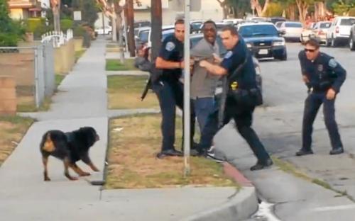 Leon Rosby dog Max killed by Hawthorne, Calif. police