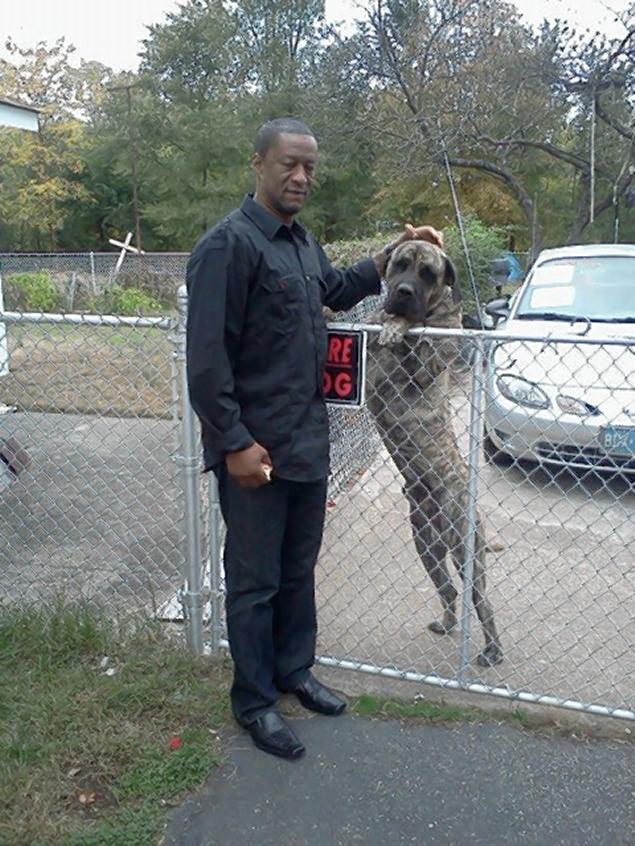 kenneth clodo santillan killed in dog attack
