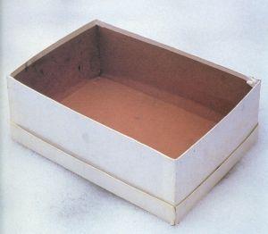 Empty-Shoe-Box