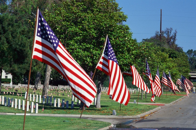 American flags lining street, cemetery in background
