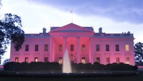 US-POLITICS-HEALTH-BREAST-CANCER