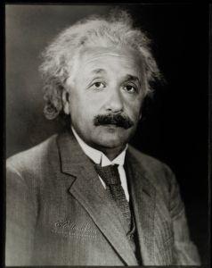 Albert Einstein Man Famous Person Genius