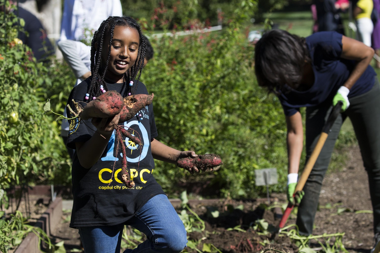 2015 White House Kitchen Garden Harvest with First Lady Michelle Obama