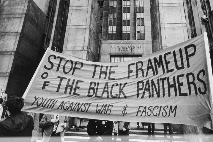 Panther Banner