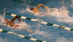 Swimmers in race