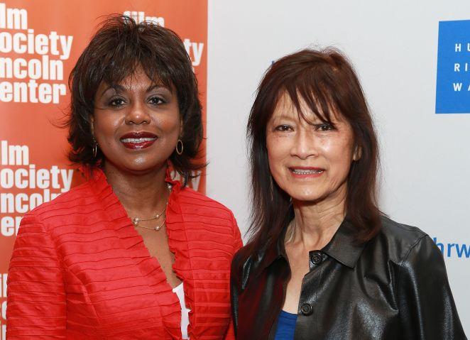 2013 Human Rights Watch Film Festival - 'Anita' Premiere