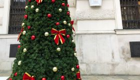 A Christmas tree by the St Michel Wing at the Hofburg in Vienna