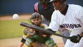 Baseball Player Bunting