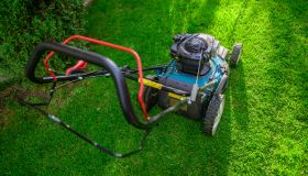 Lawn mower on fresh cut green grass in backyard