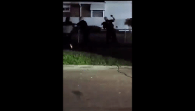 Ypsilanti, Michigan police punching black woman video