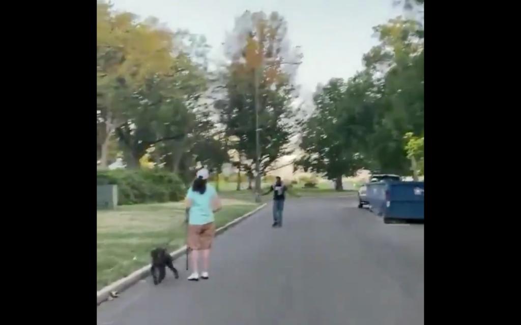 Neighborhood Karen confronts innocent black man