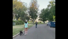 Neighborhood Karen confronts innocent black man