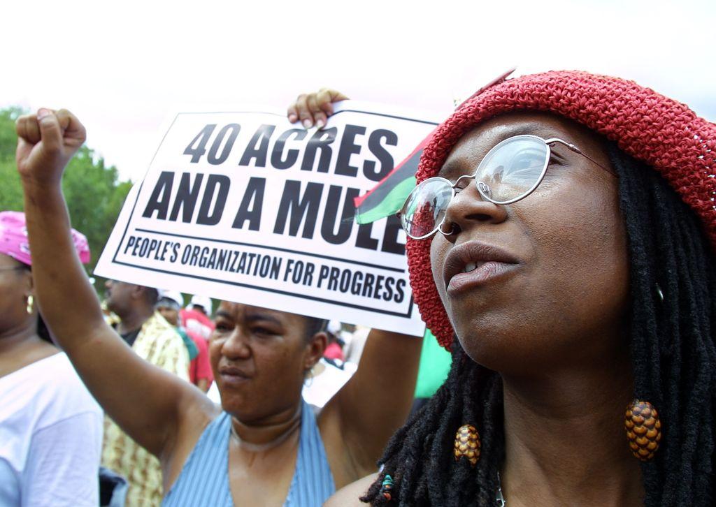 Louis Farrakhan Speaks at Slave Reparations Rally
