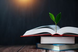 Books and trees,Education concept,growth