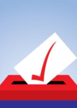North Carolina Ballot Box icon