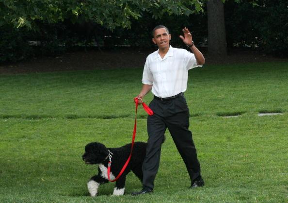 Obama Hosts Congressional Picnic