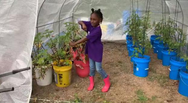 Kendall Rae Johnson black farmer