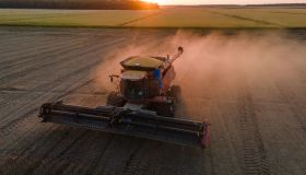 A Soy Harvest Ahead Of USDA Stockpile Estimates